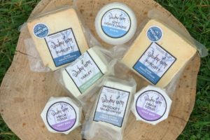 Selection of Wookey Farm Cheese